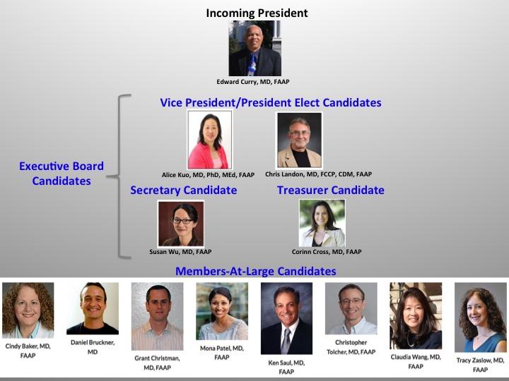 Election Candidates 2016-18
